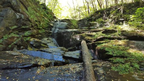 America's National Parks celebrate 100th anniversary, Delaware Water Gap Recreation Area Turned 50