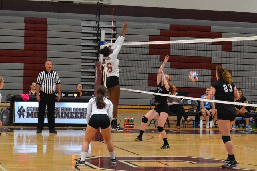 Hewitt shines on defense