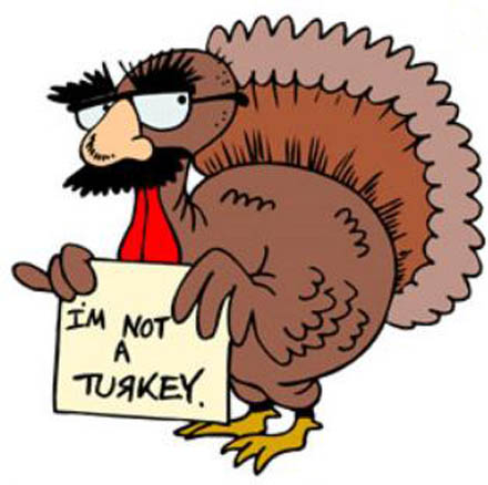 Could you Survive Thanksgiving as a Turkey?