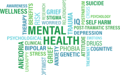 1 in 5 adolescents suffer from a mental health disorder