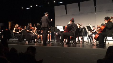 Chamber Orchestra hypnotizes audience with beautiful sound