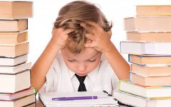 Find out if homework assignments will benefit you in life
