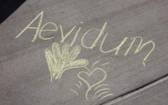 Aevidum: Lets chalk about mental health: See photo gallery below