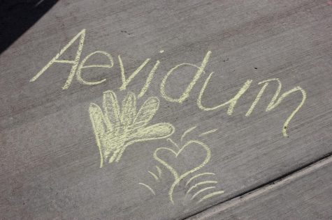 Aevidum: Let's chalk about mental health: See photo gallery below