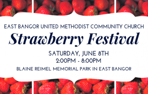 Strawberry Festival: 6/8/19