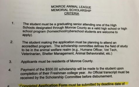 Monroe Animal League Scholarship