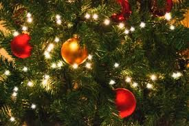 The Garden Club Christmas tree decorating contest: VOTE HERE!