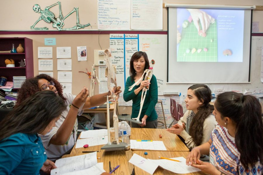 An anatomy class is being taught about the structure of a skeleton.