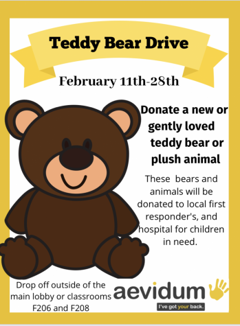 Aevidum holds Teddy Bear drive and promotes kindness