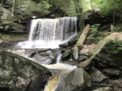 Beautiful Pennsylvania waterfall.  Everyone can have a green thumb to maintain the beauty of nature.
