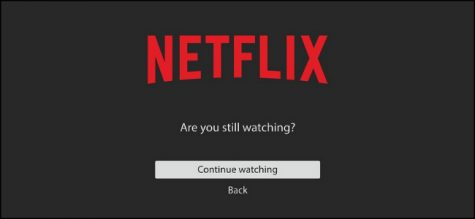 "The Netflix ""Are you still watching?"" screen is pictured above."