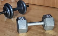 Dumbbells are placed on the ground, ready to be used during a workout.