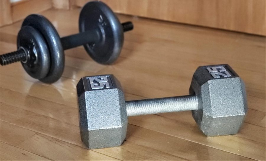 Dumbbells+are+placed+on+the+ground%2C+ready+to+be+used+during+a+workout.