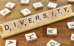 SHS creates Diversity Program to celebrate cultures