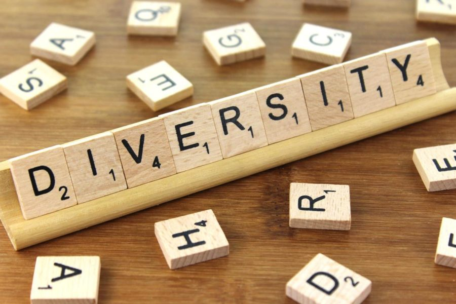 SHS+creates+Diversity+Program+to+celebrate+cultures