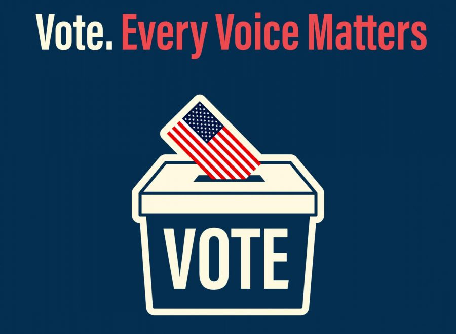 Election Day 2021- Who are the Monroe County candidates?